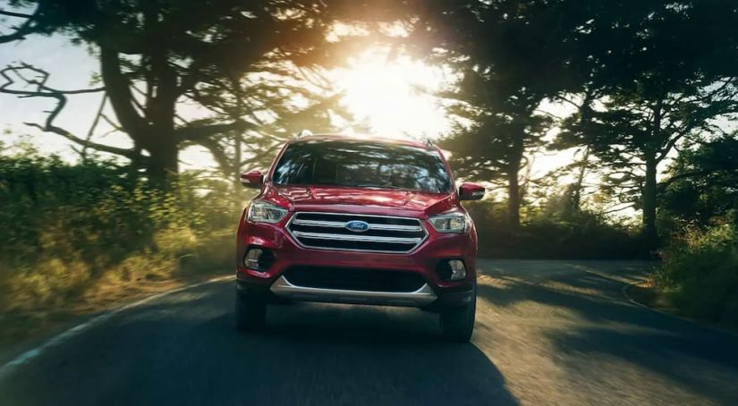 A red 2019 Ford Escape is driving with sun shining through the trees.