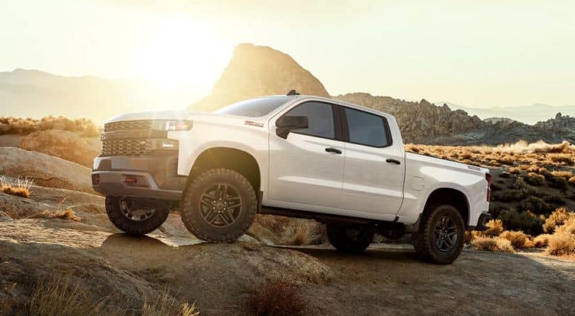 A white 2019 Chevy Silverado 1500 Custom Trail Boss is off-roading at sunset.