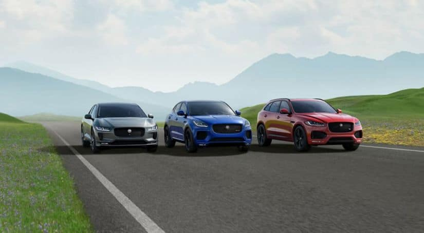 Three Jaguar models are driving on a mountain road in blue, grey, and red.