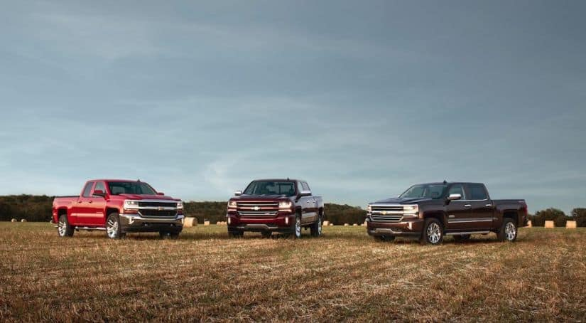 Three 2016 Silverado trucks are parked in a field.