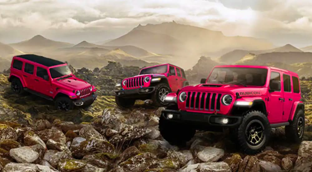 Three pink vehicles are shown, a 2022 Wrangler Sahara 4xe Unlimited, a 2021 Wranlger Rubicon 4xe Unlimited, and a 2021 Wrangler Rubison 392 Unlimited.